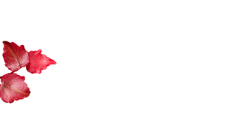 One Room 2